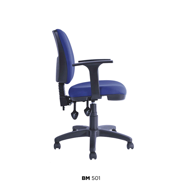 BM-501