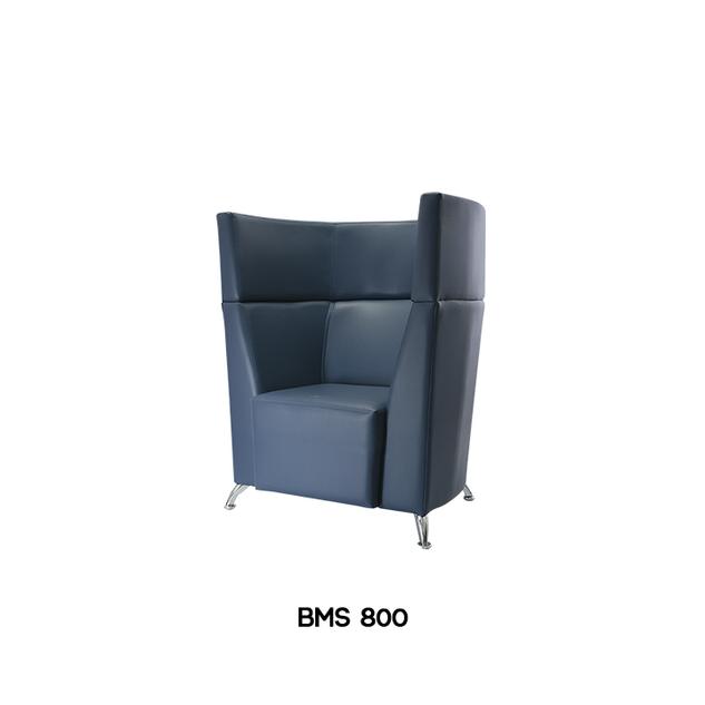 BMS-800