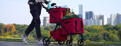 Close up of VOOMcart with Red Baskets
