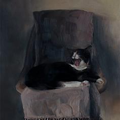 Cheddar Cat