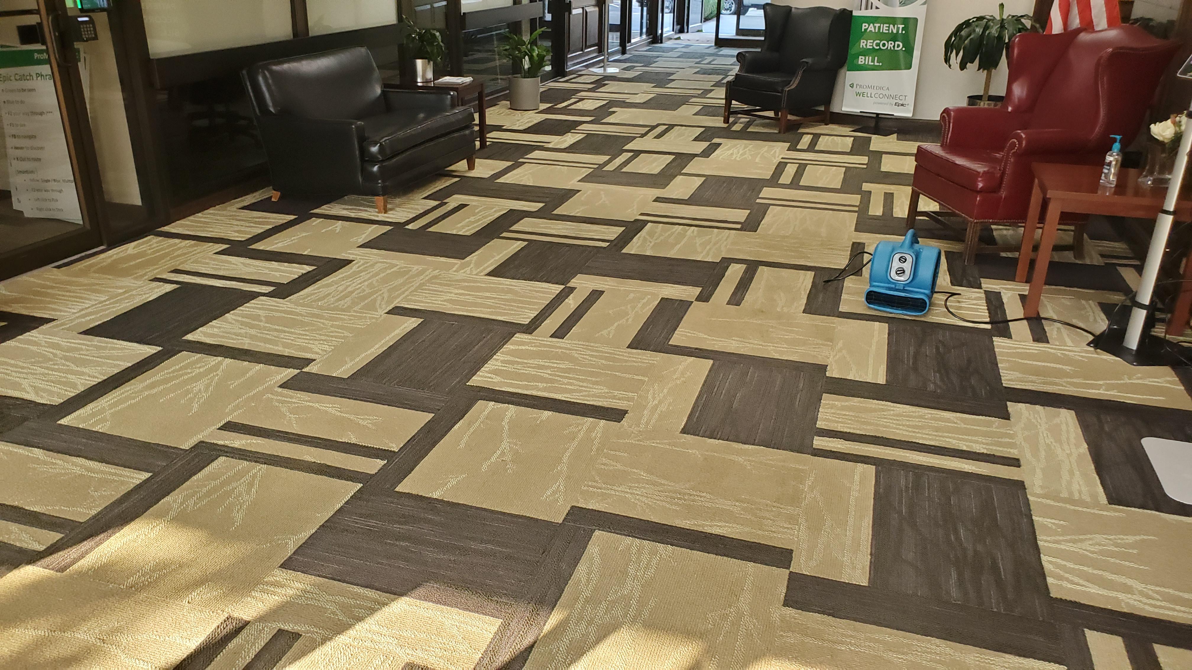 Lobby Carpet