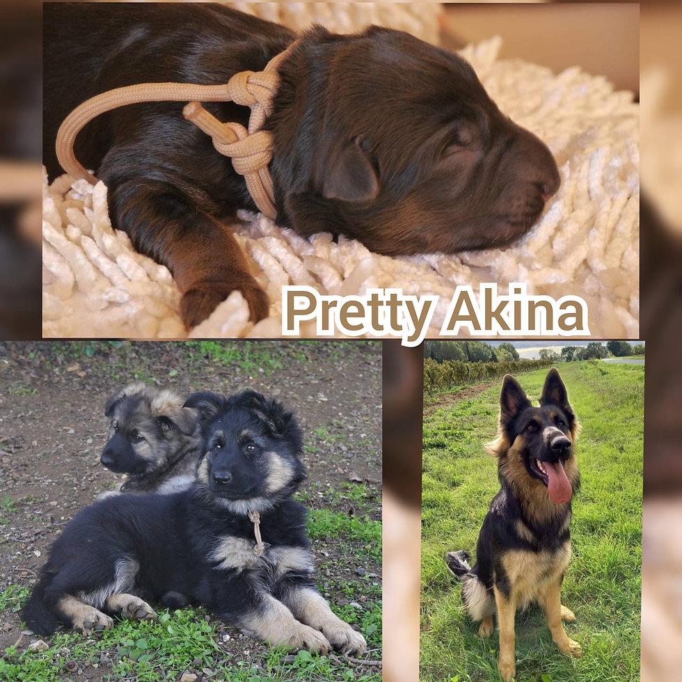 Pretty Akina.jpg