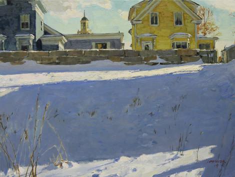 Field In Winter