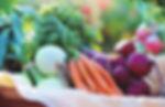 Vegetable-Garden-Size-Calculator-How-Muc
