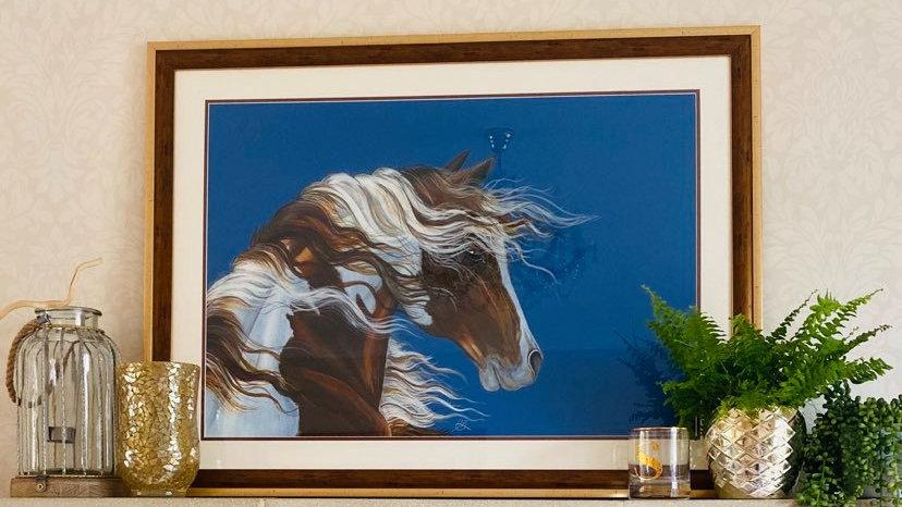 Pinto Stare Framed Original Artwork