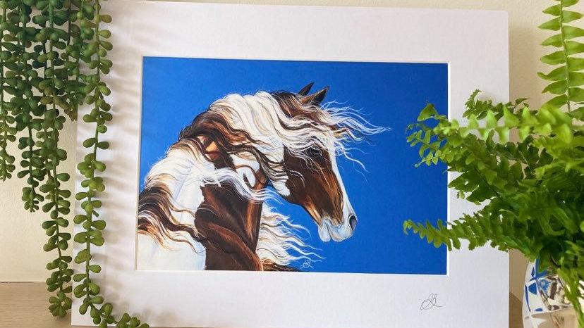 Pinto Stare Glicée Print