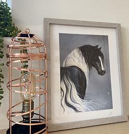 harlequin framed.jpg