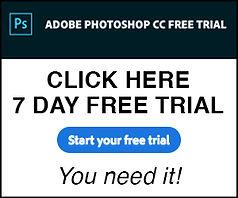 Fake ad.jpg