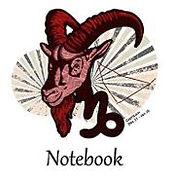 Capricorn notebook.JPG