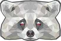 Raccoon poly.png