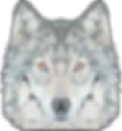 Wolf poly.png