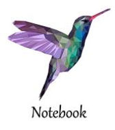 hummingbird notebook.JPG