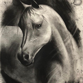 Horse - Charcoal