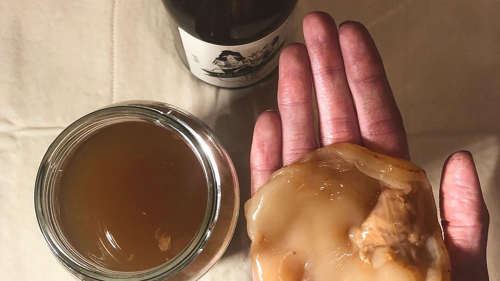 SCOBY and instructions