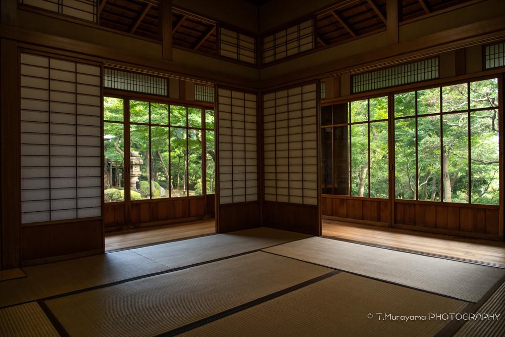 広間から見る日本庭園