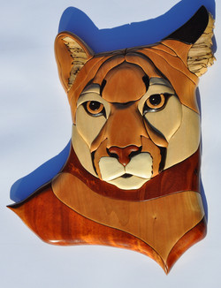 Puma Intarsia (1)
