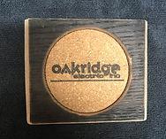 Oak Ridge Electric Coaster.jpg
