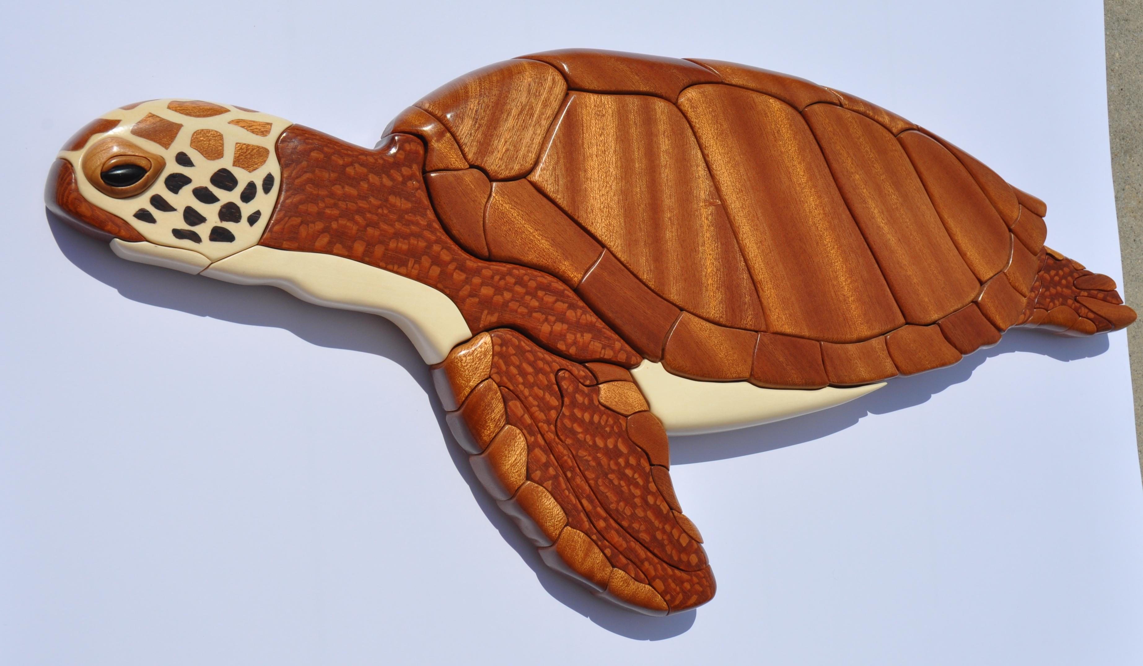 Turtle Intarsia (2)