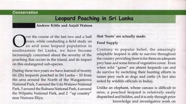 pic_leopard_poaching_1.jpg