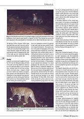 pic_cat_news_article_2012_4.jpg