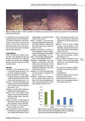 pic_cat_news_article_2012_5.jpg