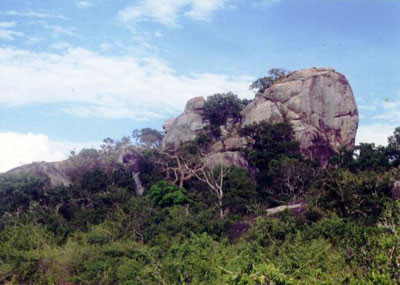 Jamburagala rock-Yala.jpg