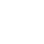 projects_icon_leopard.png