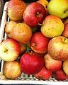 frutta verdura biologica Lesmo