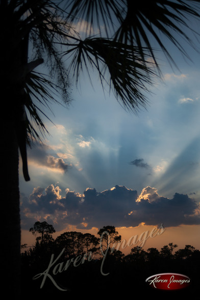Nature images__Karen Images 2020052.jpg