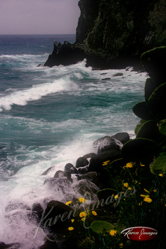 Nature images__Karen Images 2020066.jpg