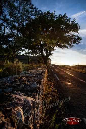 Rotie Sunset_Karen Images 2020.jpg
