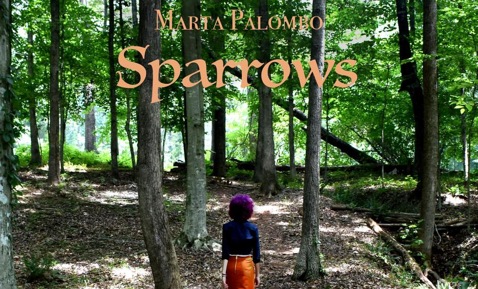 Sparrows Cover Artwork