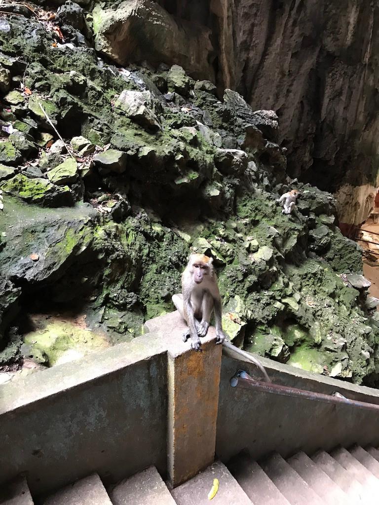 Batu Caves Temple Kuala Lumpur