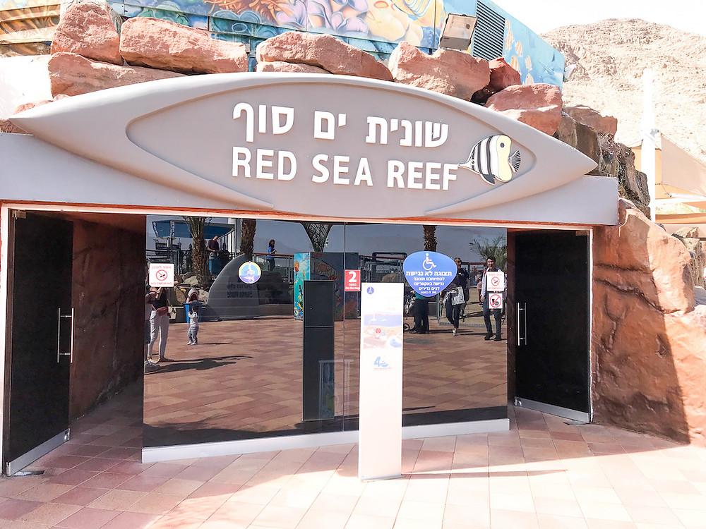 Eilat Izrael