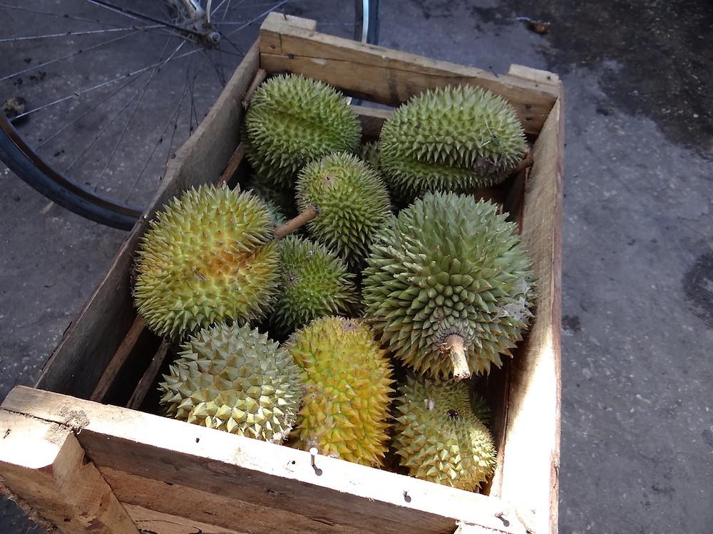 Durian - Fruit Market Zanzibar Stone Town