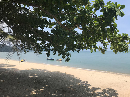 Penang najładnieszerajskie plaże ioswojona dżungla