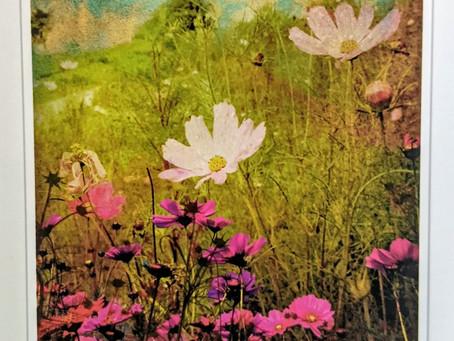 Blossoming Abundance