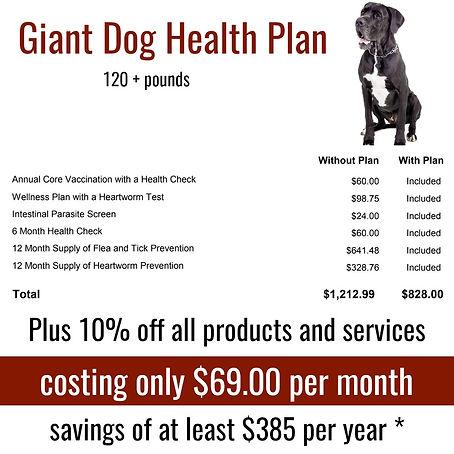 giant  dog plan.jpg