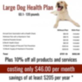 large  dog plan.jpg