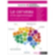 le cerveau et les apprentissages.jpg