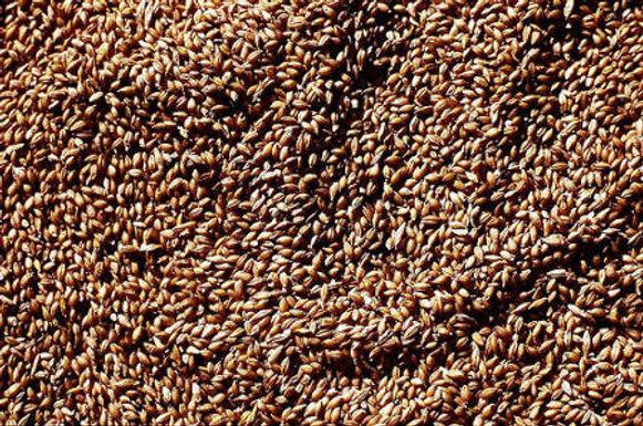 De la semence au pain paysan (Niveau 1)