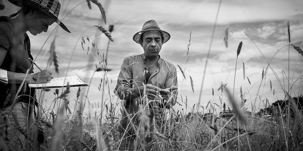 Agroécologie paysanne : fondements et pratiques