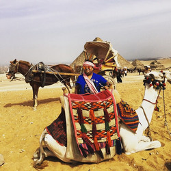 Life in Cairo #life #cairo #city #pyramids #pyramidsofgiza #lawerenceofarabia #lawerence #camel #hor