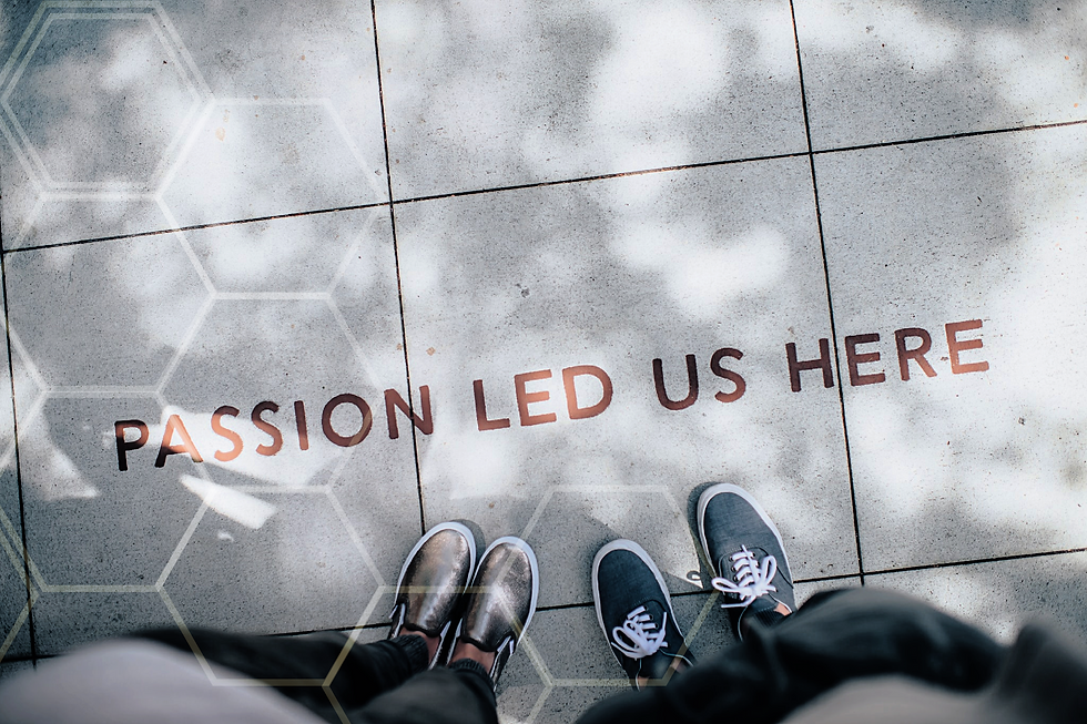Passion Led Us Here: Democracy Defenders of America