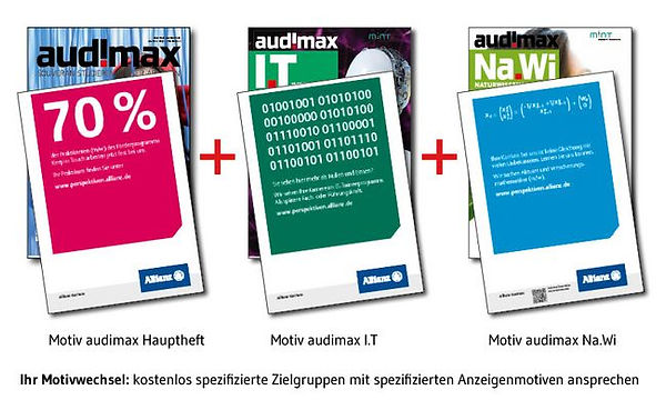 Info-Grafik: Anzeigenmotive passend zur Zielgruppe