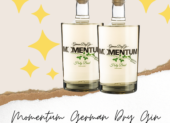 AKTION 2 Flaschen Momentum German Dry Gin