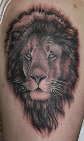 lion-portrait_6643010667_o.jpg