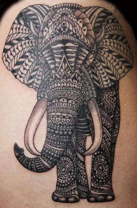 elephant_14341192247_o.jpg