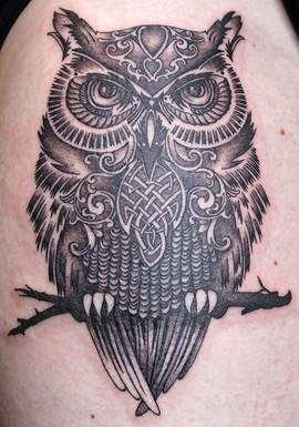 owl-web_13762298263_o.jpg