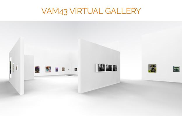 vam virtual.jpg